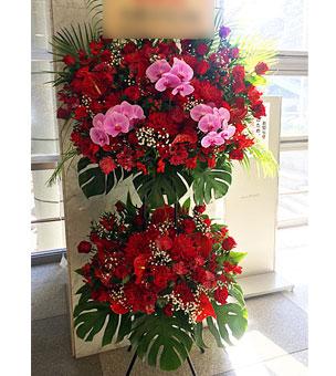 胡蝶蘭と赤バラの豪華なスタンド花